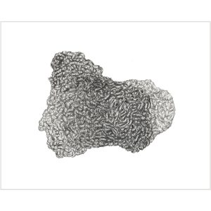 ARLETTE-ESS-Astrakhan-artprint