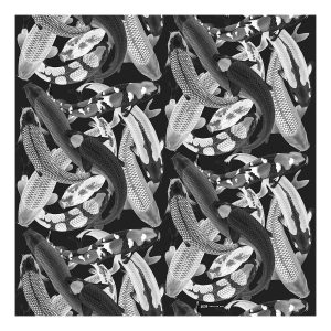 black and white Koi painting print scarf