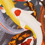 ARLETTE ESS-koi-2-color-artprint-detail