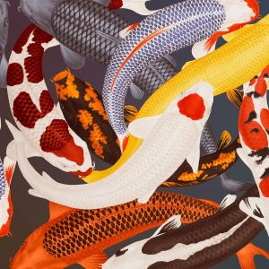Furnishing fabric featuring Koi