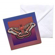 mothcard-envelope